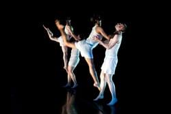 fm_sean_dorsey_dance_bylydiadaniller
