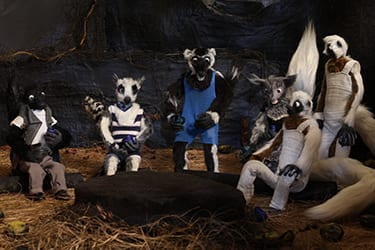 image of claymation animals from Clement Hil Goldberg film